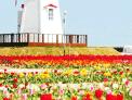 테마별 HOT한 BEST지역, 특별한 가격의 패키지여행, 조기예약 스페셜한혜택.